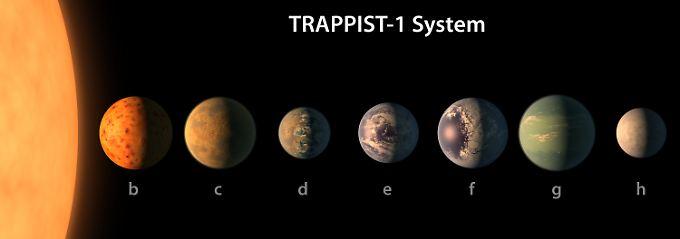 Die Illustration der Nasa zeigt die sieben Exoplaneten von Trappist-1.
