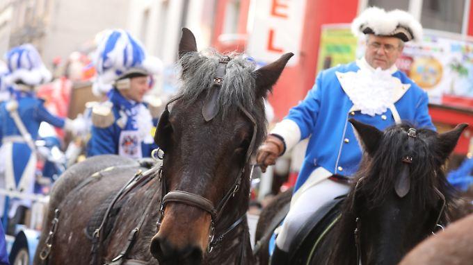 Tragende Rolle: Etwa 390 Pferde sind beim Kölner Rosenmontagszug dabei.