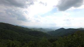 n-tv Dokumentation: Klima extrem - Laute Natur