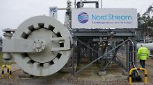 Widerstand gegen neue Pipeline: Politiker wollen Nord Stream 2 verhindern