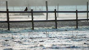 Kaiserwetter in den Alpen: Kalte Temperaturen frieren den Wintertraum ein