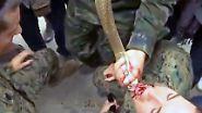Dschungeltraining in Thailand: US-Soldaten trinken Schlangenblut