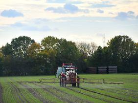 Ein Landwirt bringt Glyphosat auf einem Feld aus.