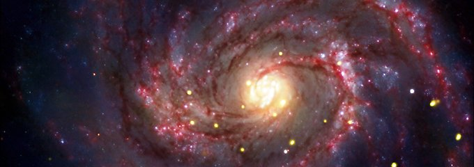Wissenschaftlicher Rohdiamant: Hobbyastronom entdeckt Supernova-Geburt
