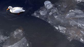 Ostwind pfeift durch Deutschland: Sonne strahlt eisige Temperaturen weg
