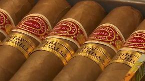 Absatz legt kräftig zu: Kubanische Zigarren sind gefragter Exportschlager