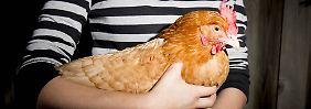 Jeder wie er mag: Ich wollt, ich hätt' ein Huhn