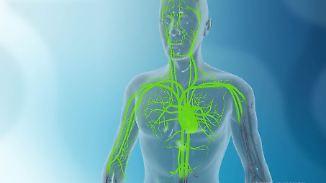 Giftiges Schwermetall Gadolinium: Kontrastmittel für MRT-Untersuchungen kann krank machen