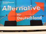 Überwachung der AfD?: Geheimdienste erwägen Materialsammlung