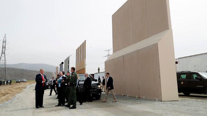 Die Mauermodelle überragen sogar Trump.