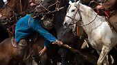Die Reiter zerren es mit manchmal zirkusartiger Kunstfertigkeit aus vollem Galopp vom Boden hoch oder aus den Händen eines Gegners.