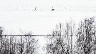 Schnee über Norden und Mitte: Sonne lässt sich nicht überall vergraulen