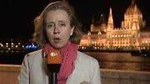"Spinne attackiert ZDF-Reporterin: ""Heute Journal""? Nee, ""Arachnophobia""!"