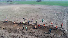 Am Wochenende ließ die Landesarchäologie Mecklenburg-Vorpommerns die etwa 400 Quadratmeter große Fläche bergen.