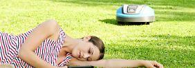 Kein Gerät ohne Unfallrisiko: Sechs von acht Rasenrobotern mähen gut