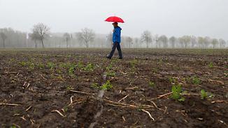 Im Norden stürmisch: Aprilwetter macht nur eine Stippvisite