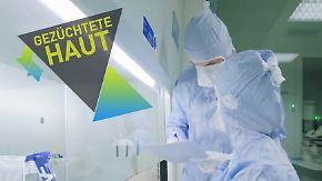 Startup News, die komplette 80. Folge: Cutiss züchtet Haut im Reagenzglas