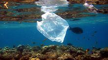 Kampf gegen verschmutzte Meere: Entwicklungsminister Müller für Plastiksteuer