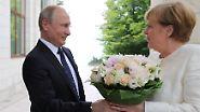 Krisenherde und ein Strauß Rosen: Putin empfängt in Sotschi erst Assad und dann Merkel