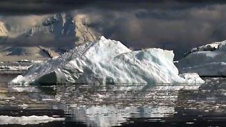Ende der unberührten Schönheit: Greenpeace findet Plastik in der Antarktis