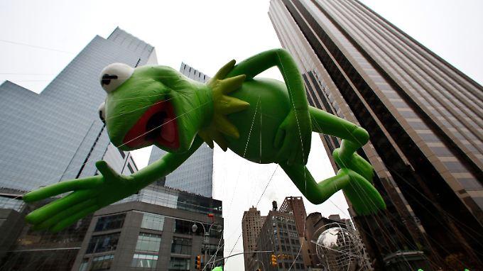 Alles im grünen Bereich. Auch bei dem fliegenden Kermit auf der diesjährigen Thanksgiving Parade in New York.