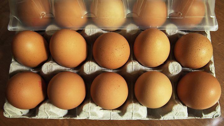 Seit dem Fipronil-Skandal des vergangenen Jahres werden Eier regelmäßig auf das Insektizid Fipronil getestet.