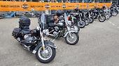 """Harley Davidson bekommt nach eigenen Angaben bislang wenig vom Handelskrieg mit den USA zu spüren. """"Dennoch konnten wir in den letzten Monaten ein gestiegenes Interesse an unseren Maschinen beobachten"""", sagt Pressesprecher Rudolf Herzig."""