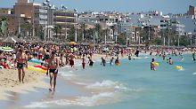 Badeverbot für Urlauber: Giftquallen bedrohen Mallorca-Touristen