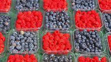 """Heimisches Obst macht auch fit: """"Superfood"""" gibt es längst günstig und lokal"""