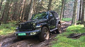 Wer den Jeep Wrangler Sahara vorzieht, muss keine Angst haben, dass er nicht durchs Gelände kommt.