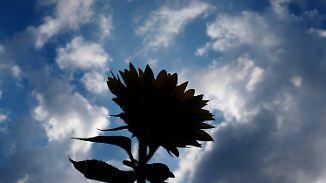 Sonniger Wochenstart: Gewitter trüben Hochsommerlaune im Süden