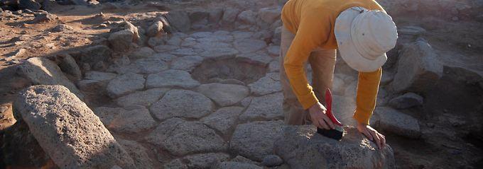Viel älter als Ackerbau: Archäologen finden älteste Spuren von Brot