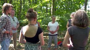 Bäume als Energietankstelle: Waldbaden soll Körper und Geist helfen