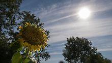 Wetterwoche im Schnellcheck: Erste große Hitzewelle des Jahres kommt