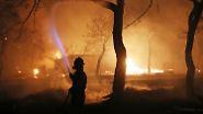 """""""Nationale Tragödie"""": Viele Feuertote in Griechenland"""