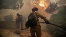 Nahe Athen bekämpfen Feuerwehrleute einen tödlichen Waldbrand.