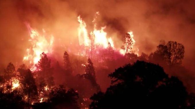 Größter Waldbrand der Geschichte: Kalifornien wird von Feuerinferno heimgesucht