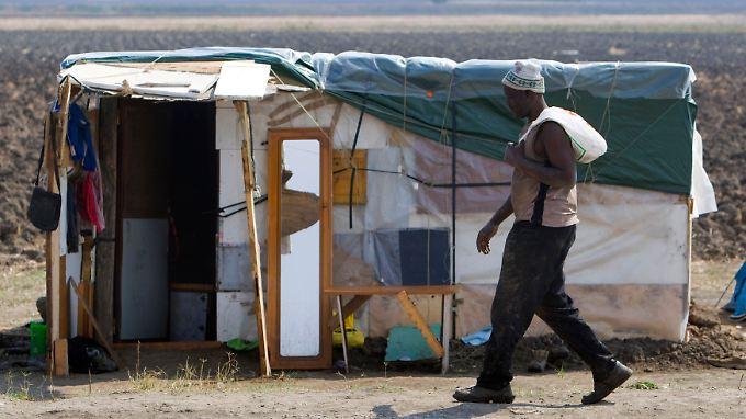 Feldarbeiter vor seinem Unterschlupf in Apulien. Der Hass auf Schwarzafrikaner in Italien nimmt zu. Auf den Feldern Süditaliens sind sie weiterhin willkommen.