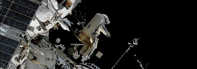 Antenne an Außenhülle montiert: ISS hilft bald bei Tierbeobachtung