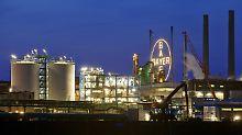Gericht hebt Verfügung auf: Bayer darf Glyphosat in Brasilien vertreiben