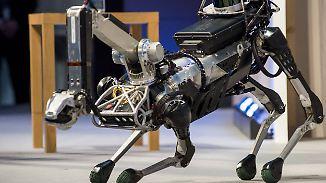 "Manege frei für ""Spotmini"": Wachhund bekommt Roboterkonkurrenz"
