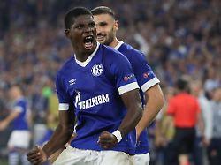 Nur Remis in der Königsklasse: Schalke verpasst Sieg gegen Porto