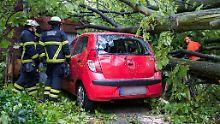 Sturmschaden: Welche Versicherung greift?