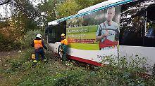 30 Passagiere und kein Fahrer: Vollbesetzter Bus rollt in einen Wald
