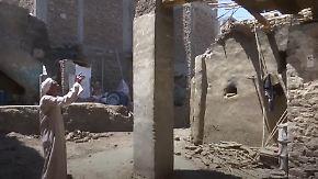 Insektenplage in Ägypten: Termiten fressen Dorf auf