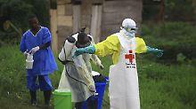 Ausbruch im Kongo: WHO beruft Ebola-Krisenausschuss ein