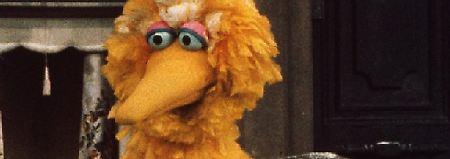 Sesamstraße verliert Legende: Bibo-Darsteller hängt Kostüm an den Nagel
