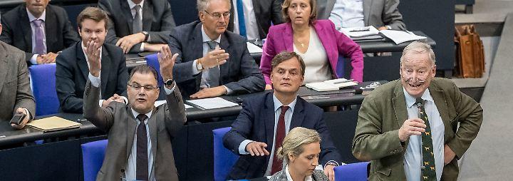 Seit einem Jahr im Bundestag: AfD bringt aggressiven Ton in Parlamentsdebatten