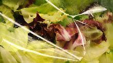 Antibiotika haben es schwerer: Resistente Bakterien in Supermarkt-Salat