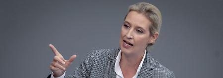 Dubiose Zahlung an AfD: Weidel gab Spende für Wahlkampf aus